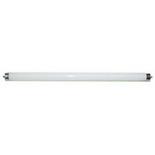 T8 15W – Запасная лампа для светильников